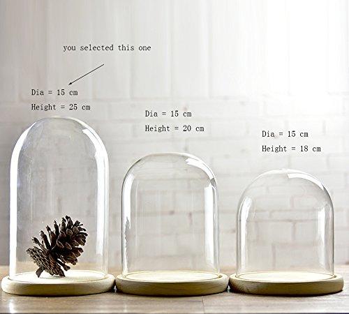 Vidrio campana campana de cristal con bandeja de madera de cúpula con