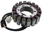 Lichtmaschine/Stator für Yamaha V-Max 1200 VP031 1999 bis 2002