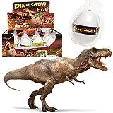 German Trendseller® - 6 x Dino im Ei ? NEU ? ? ++ Echt schlüpfender Dino ++ ? Mitgebsel ? Kindergeburtstag ? Dinosaurier ? Schlüpfgarantie 100%? 6 x Dino Eier