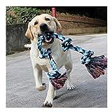 Forwindog Hundespielzeug aus Seil für Starke große Hunde, 91 cm, 5 Knoten, Seil für Aggressive Kauen, interaktives Seil für große Hunderassen, 5 Knoten