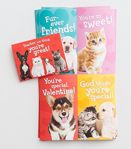 Schnurrhaare und Pfoten Valentine Kid Karten