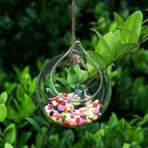 vase en verre transparent suspendu forme de boule pour plantes fleurs d coration de jardin. Black Bedroom Furniture Sets. Home Design Ideas