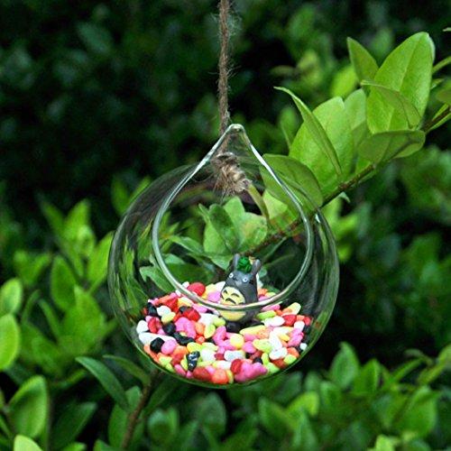 Jarrones de Vidrio Forma Botella Florero Colgante de Pared Decoración Flor Planta
