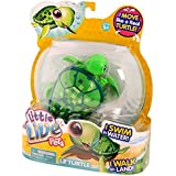 Little Live Pets - S1  Turtle Single Pack