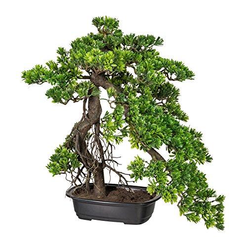 Kunstpflanze Kunstpflanze »Bonsai