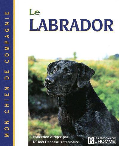 le-labrador-mon-chien-de-compagnie