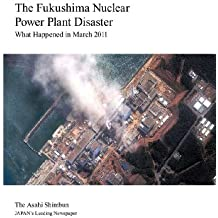 The Fukushima Nuclear Power Plant Disaster: What Happened in March 2011 (English Edition)