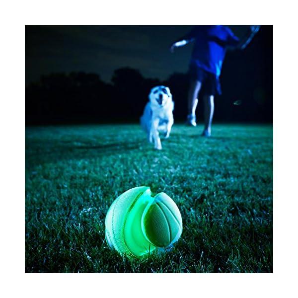 Chuckit! CI Kick Fetch Max Glow Dog Toy, 14 cm, Small 3