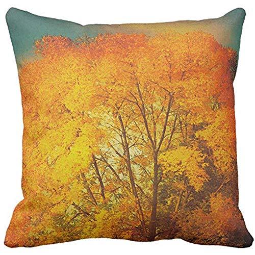 FPDecor Housses de Coussin, Throw Pillow Cover Orange Photography Autumn Tree Nature Blue Leaves Decorative Pillow Case Home Decor Square 18 x 18 inch Pillowcase