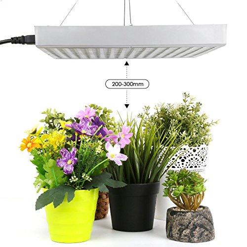 Amzdeal Pflanzenlampe