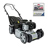 Murray EQ300 Self-propelled Petrol Lawn Mower, 16'/41 cm, Briggs & Stratton 300E Series Engine, Grey