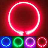 PetSol Ultra Bright LED Collar (Rot)