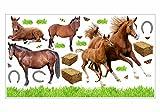 nikima - 003 Wandtattoo Pferd mit Fohlen Pony reiten Gras Wiese Hufeisen in 6 Größen - Kinderzimmer Sticker Babyzimmer Pferde Wandaufkleber niedliche Wandsticker süße Wanddeko Wandbild Mädchen (2000 x 1120 mm)