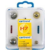 Cartrend Glühlampenbox H7, 7-teilig