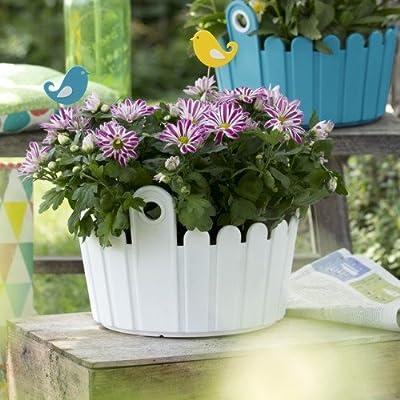 EMSA Blumenkasten LANDHAUS, UV-beständig, frostfest, Made in Germany von Emsa - Du und dein Garten
