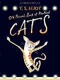 ISBN 9780571311866