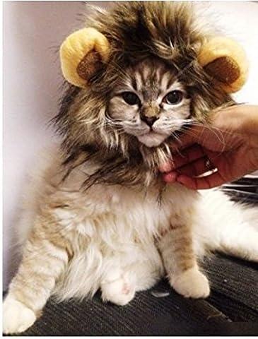 Ma-on Pet Costume Lion Mane Perruque pour chien chat Halloween Dress Props