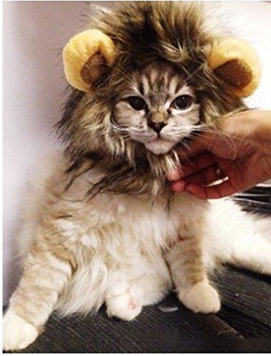 philna12Pet Löwe Mähne Perücke für Hund Katze Halloween Kleid ()