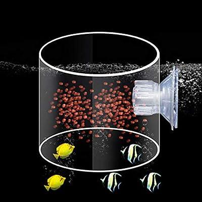 Wenjie Aquarium Fütterungskreis Acryl Fütterungsring Trompete SiYuan Aquarium Fütterungsring Aquarium Fisch - Transparent - S