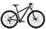 FOCUS WHISTLER SL Mountainbike 27/29 Irongrey matt 2018 RH 36 cm / 27 Zoll