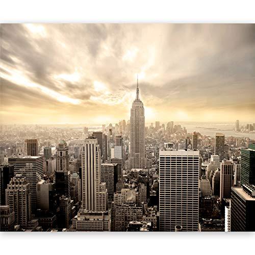 Murando Fotomurales Nueva York 400x309 cm XXL Papel