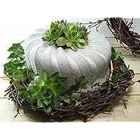 Betonkuchen Gartendeko Gugelhupf handgemacht Durchmesser 20cm