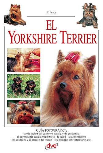 El Yorkshire Terrier por Valeria Rossi