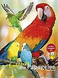Entdecke die Papageien (Entdecke - Die Reihe mit der Eule / Kindersachbuchreihe) - Thomas Schmidt