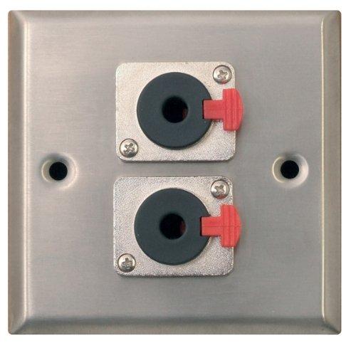 In metallo argentato AV piastra a muro con 2 x 6,35 mm presa Jack