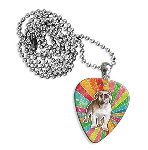 Bulldog Rainbow Gitarre Plektrum Pick Halskette Necklace (GD) (Bulldog-gitarre)