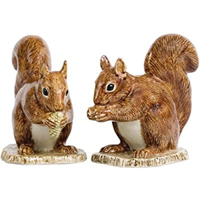 Quail Ceramics - Red Squirrel Salt And Pepper Pots from Quail Ceramics