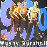 Wayne Marshall Reggae