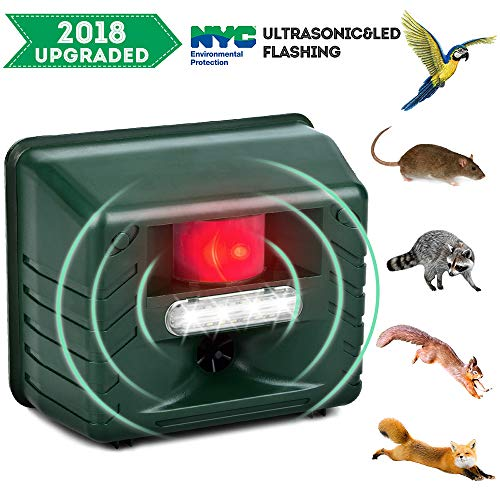 aubenabwehr Katze Schreck Ultraschall Insektenvertreiber, Vogel Abweisend, Alarm Sound Flash Outdoor Wasserdicht ()