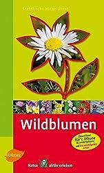Steinbachs Naturführer Wildblumen: Entdecken und erkennen