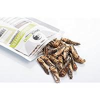 SnackInsekt Grashüpfer, gefriergetrocknet 20 g | zum Snacken, Knabbern und Verfeinern | essbare Insekten | in Europa gezüchtet und untersucht | für den menschlichen Verzehr | Knabberspaß mit wenig Kalorien | Fitness Food