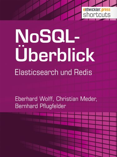 NoSQL-Überblick - Elasticsearch und Redis (shortcuts 99) (German Edition)