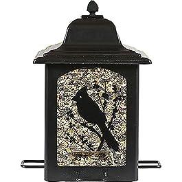 Perky-Pet 363 Mangiatoia Birds e Berries a Lanterna per Uccelli