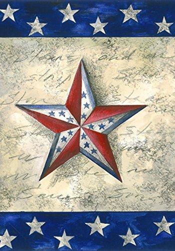 Toland Home Gartensterne auf Stern, dekorativ, Patriotische Amerika, Juli 4 House Flag (28