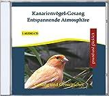 Kanarienvögel-Gesang Entspannende Atmosphäre - Gesang und Gezwitscher von 15 Kanarienvögeln - Tiergeräusche - Vogels