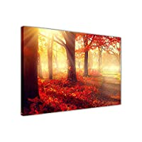 "New Sunshine Autumn Forest on Framed Canvas Wall Art Prints Nature Pictures SIZE: A3 - 16"" X 12"" (40cm X 30cm)"