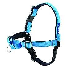 PetSafe, Easy Walk Deluxe Harness/leash, No pull, Training, Adjustable for small/medium/large dogs Medium, Ocean Blue, 1.8 m
