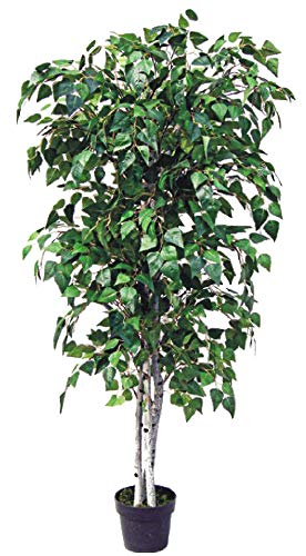 Decovego Birke Birkenbaum Kunstpflanze Kunstbaum Künstliche Pflanze mit Echtholz 180cm