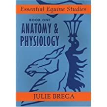 Essential Equine Studies: Anatomy and Physiology: Bk. 1
