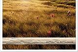 Trauerkarte Abendstille | Ähren im Sonnenuntergang | metALUm #00039