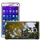hello-mobile Bild Hart Handy Schwarz Schutz Case Cover Schale Etui // M00137320 Buntspecht Vogel // Samsung Galaxy Note 4 IV