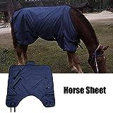 Zerone Coperta leggera impermeabile della coperta di scambio del cavallo 70D della coperta 600D (M)