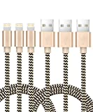 iPad Charger,Cagayan Lightning Cable fits All iPhone Cases, Nylon Braided Sync and Charging Cable 5 ft/1.5M for iPhone, iPad, Air, iPod Nano/Touch Compatible iOS10 (Gold)