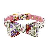 PET SPPTIES Hundehalsband justierbarer Bowknot Hund Hundehalsband Sweet Nieten Welpen Umhängeband PS039 (M, Pink)