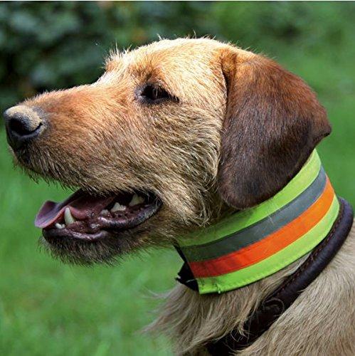 AKAH collar de protección Tricolor con elementos reflectantes