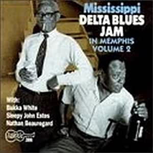 Mississippi Delta Blues Jam in Memphis Vol.2